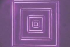 shikaku改正2紫